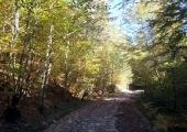 В началото се върви по стар павиран път, който следва коритото на река Мразеница