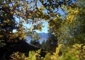 Голяма част от маршрута, особено на излизане от гората в подножието на Капатник, предлага страхотни гледки към Пирин, Родопите и Разложката котловина