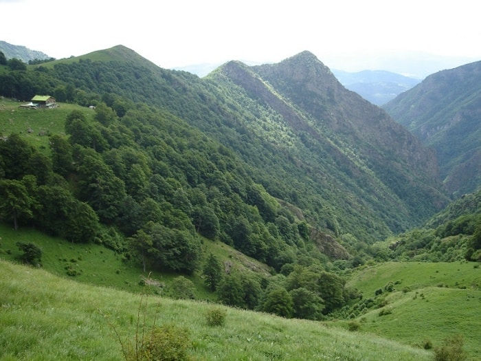 Raj Hut and Djendema Gorge