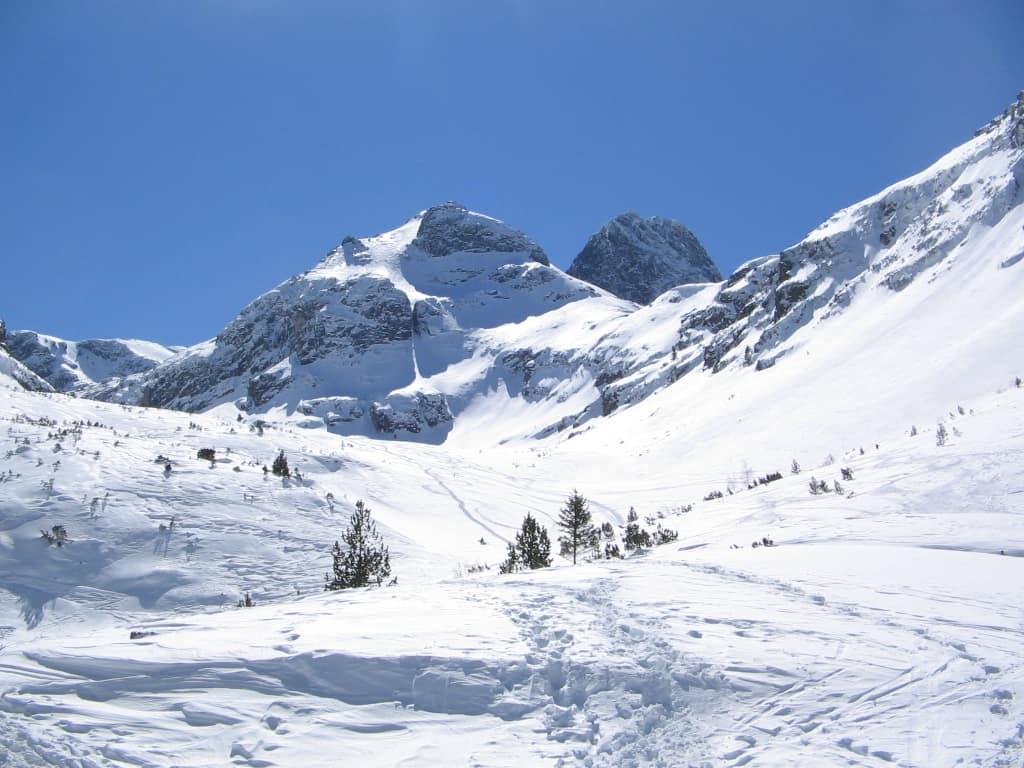 Зимна Мальовица