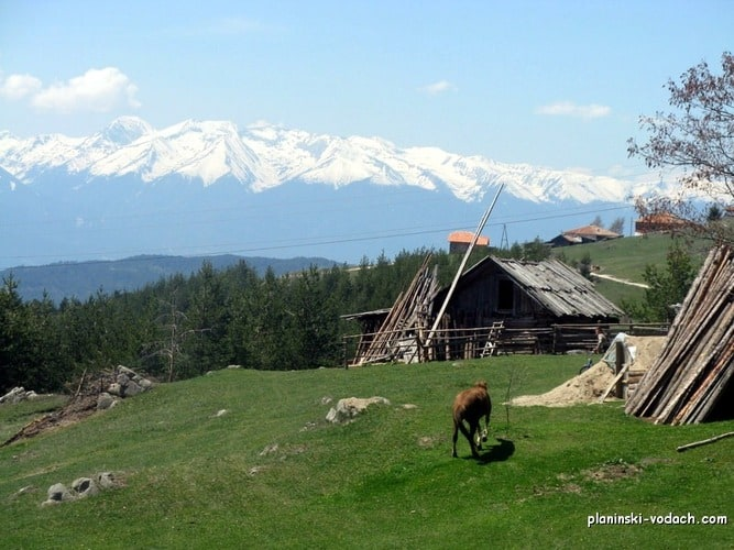 Mountain Bikig in Rhodope Mountains - view to the Northern Pirin Mountains