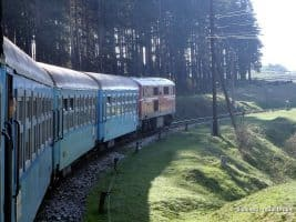 The narrow gauge train near Avramovo station