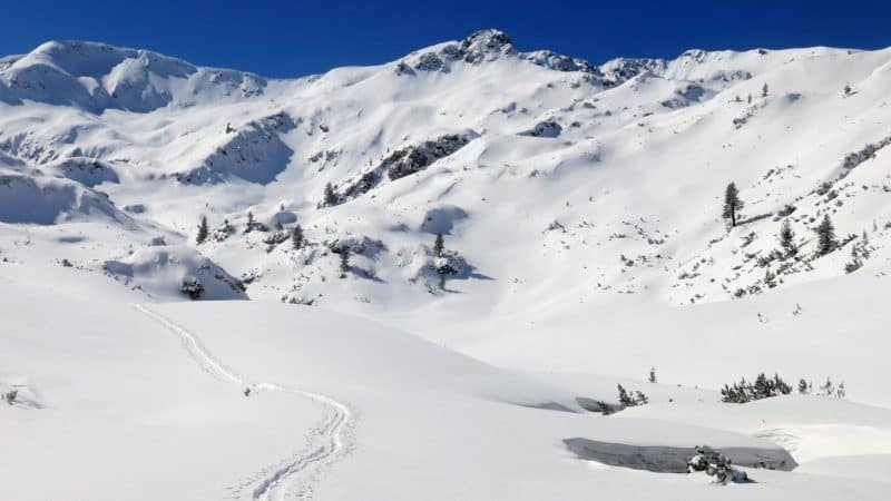 Break your own trail in the snow of Pirin Mountains...