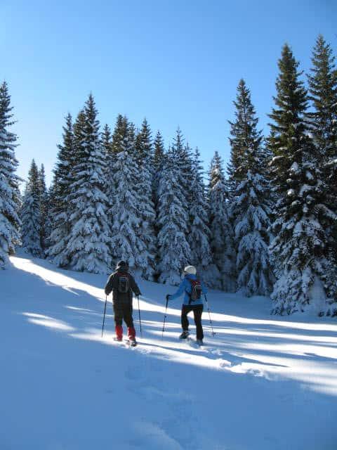 Snowshoeing on Vitosha