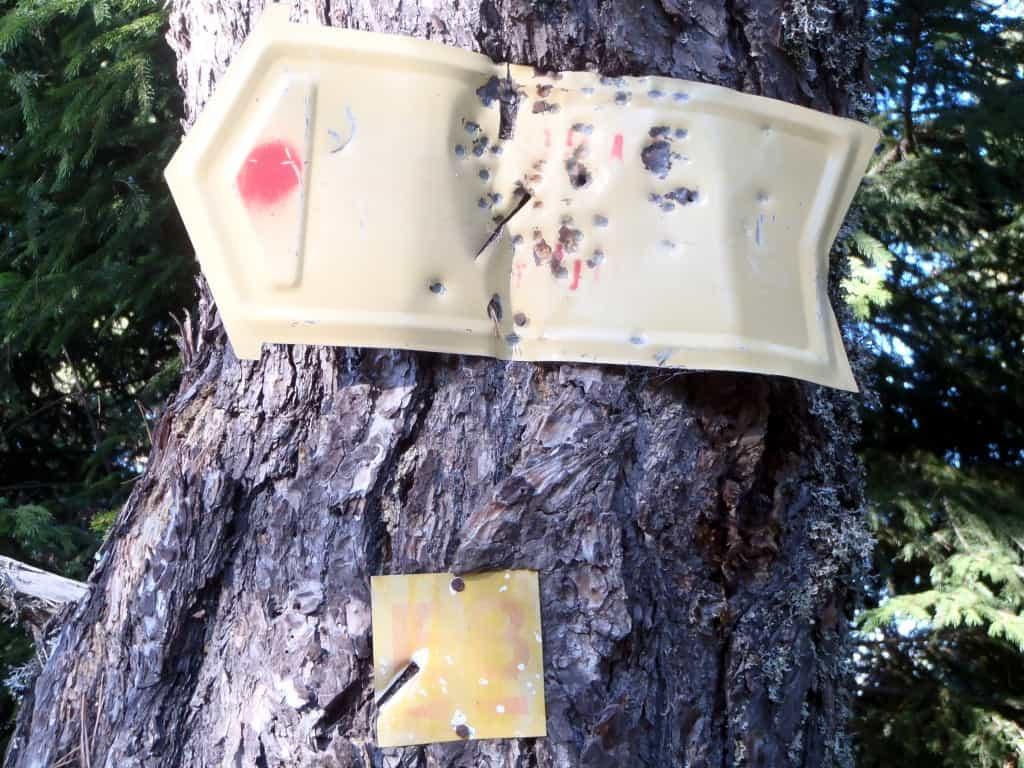 Remnants of E8 markings near Avramovo Village