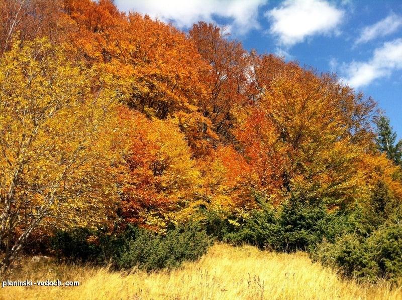 Копренската екопътека през есента