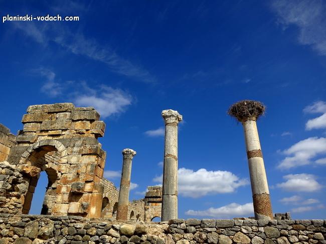 Волюбилис – римски град близо до Мекнес