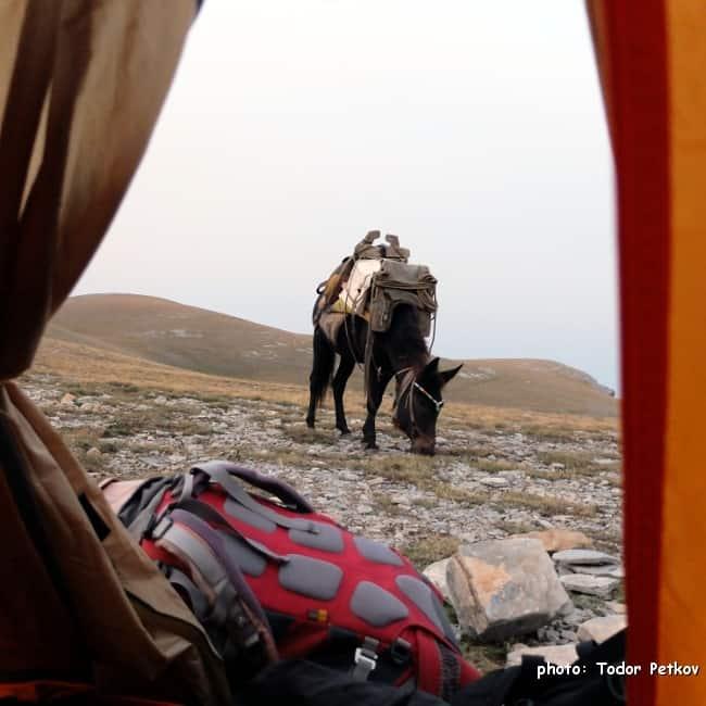 Our camp near Kakalos Hut