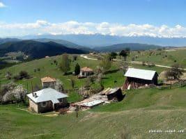 The village of Ortsevo