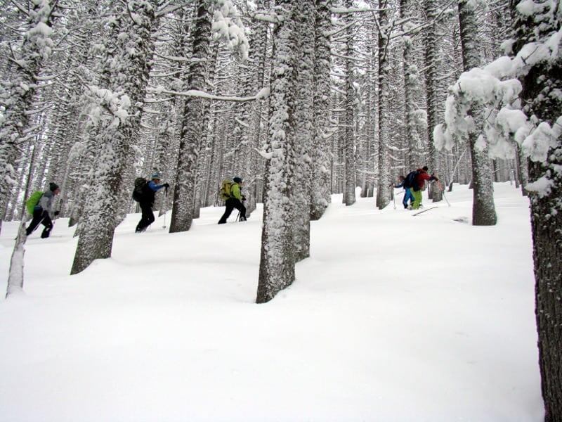 Ski Touring Yavorov Hut