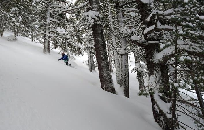 Skiing the forests of Bansko