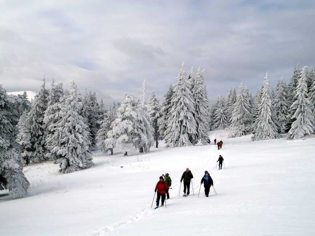 Snowshoeing Bulgaria