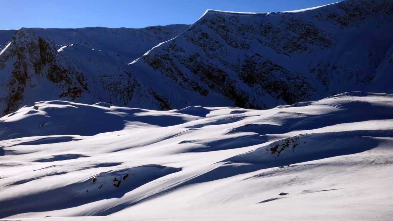Зелени рид снегоходки