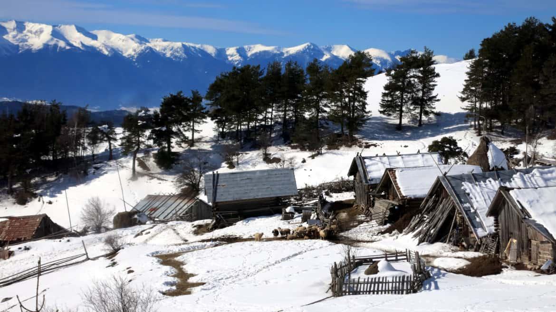 Снегоходки Орцево