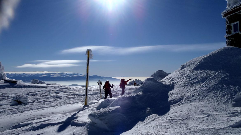 Снегоходки на Витоша